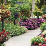 How to make a beautiful garden in short place
